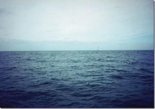 carreras_de_submarinos
